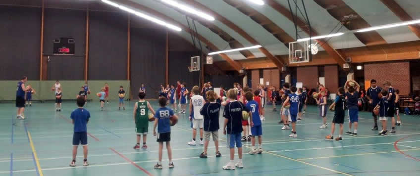 basketbal in haarlem en bloemendaal
